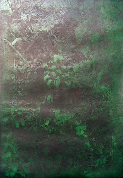 Katsutoshi Yuasa, 'Illuminated Nature', 2014
