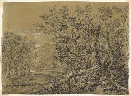 Jonas Umbach, 'Stream through an Ancient Forest'