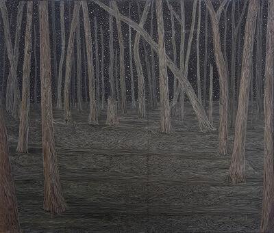 Tom Reed, 'night path', 2019