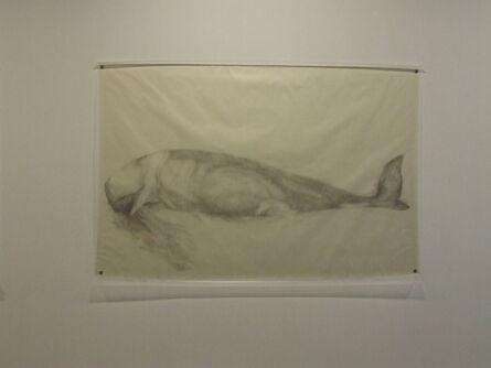 Avish Khebrehzadeh, 'Whale', 2009