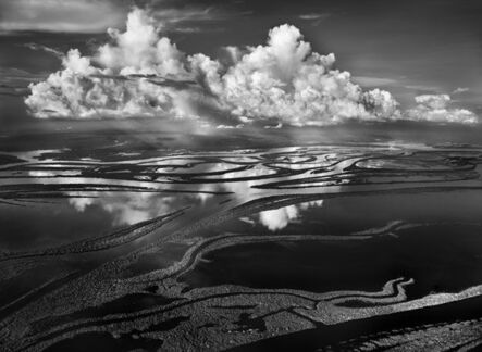 Sebastião Salgado, 'The force of the floodwaters is influenced by the thawing of the Andes mountains in Colombia, where one of the sources of the Rio Negro is located. The river's flow shapes the island unto long forms that follow the direction of the water. Anavilhanas National, state of Amazonas', 2009 [printed on request]