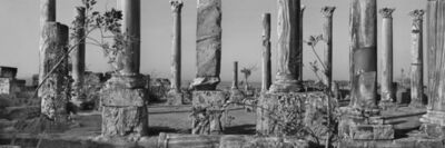 Josef Koudelka, 'Libya, Apollonia in Cyrenaica, eastern basilica. Its tall columns, topped with reused capitals, are made of Cipollino marble. 5th-6th century CE. Photograph: 2007.', 2007