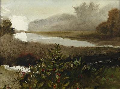 Andrew Wyeth, 'Backwater', 1982