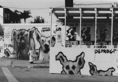 Arabella Colton, 'Wall Dogs — Animal Liberation, Chestnut, Columbus & Taylor St., San Francisco 1992', 1992