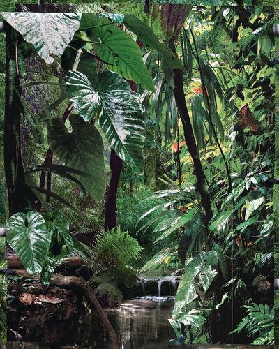 Noemie Goudal, 'Les Mécaniques, Tropiques I', 2020