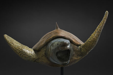 Mauro Corda, 'Tortue Requin', 2017