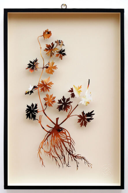 Paolo Giardi, 'You Can Learn a Lot of Things From the Flowers - Plant LXII', 2014