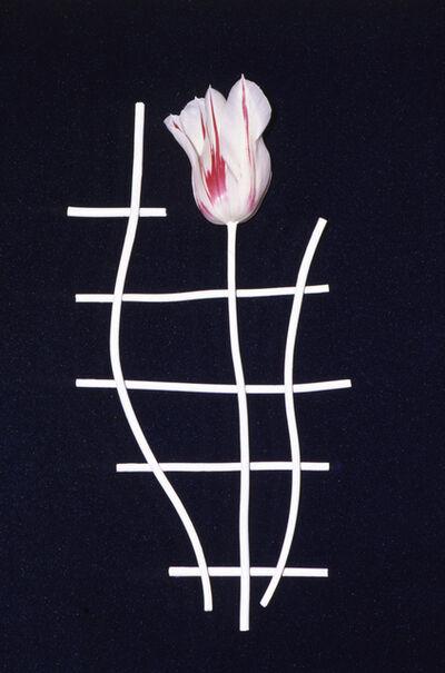 Unglee, 'Éludienne, Paris - 30 avril 1992 - juillet 1992', 1992