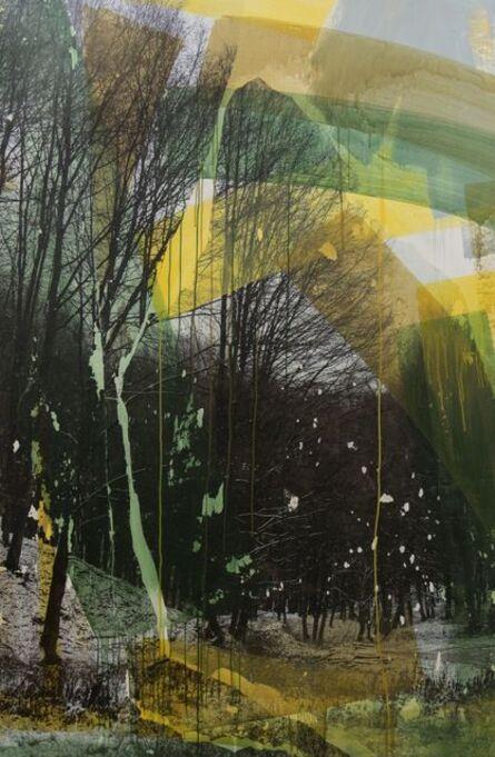 Levente Szücs, 'AUGMENTED NATURE #02', 2019