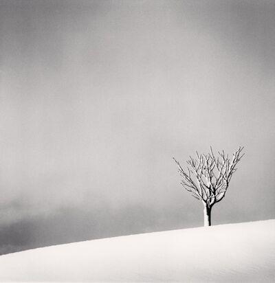 Michael Kenna, 'Snowfall, Numakawa, Hokkaido, Japan', 2004