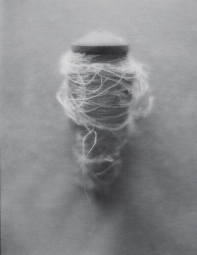 Sophia Hamann, 'ZWIRN', 2012