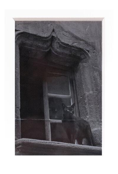 Brassaï, 'Chat à la fenêtre', ca. 1960
