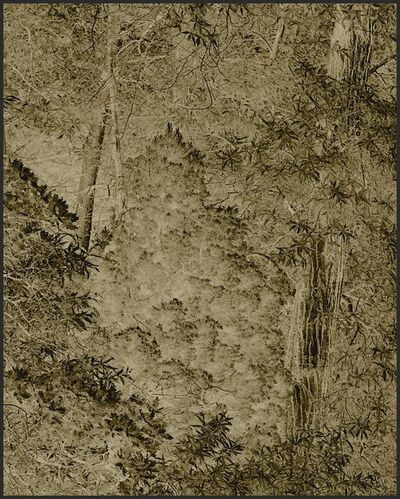 Clifford Ross, 'Harmonium VI', 2007
