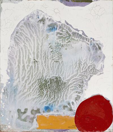 Bernd Haussmann, 'Safari Sunset', 2016