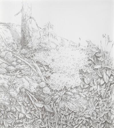 Anne Koskinen, 'Rock in the Backyard', 2012