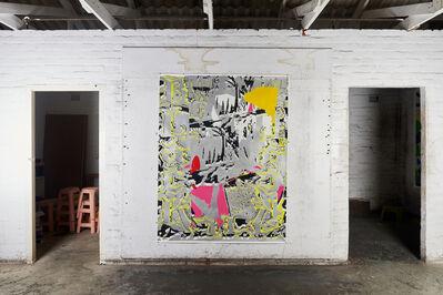 Cameron Platter, 'Untitled', 2017