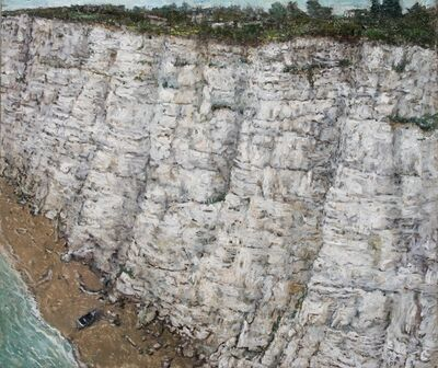 Chester Arnold, 'Not the Cliff Itself, But the Idea of the Cliff', 2009