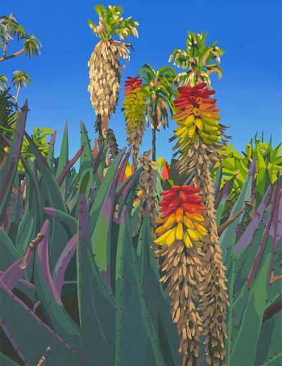Lindsey Warren, 'Huntington Aloe Bloom', 2020