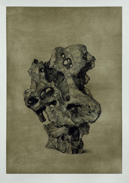 Shao Yinong & Mu Chen 邵逸农 & 慕辰, 'Objects of Nature - Wuming', 2014