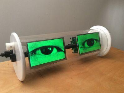 Alan Rath, 'Electric Eyes III', 2015