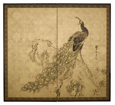 Kishi Ganku, 'Peacock on Rock (T-3096)', Edo Period (1615-1868) 19th Century