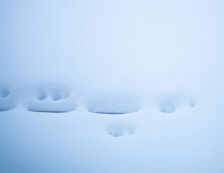 Bastienne Schmidt, 'Snow, Bridgehampton', 2013
