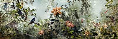 Ysabel Lemay, 'Phenomena', 2013