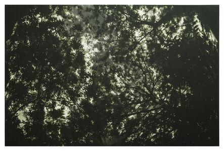 James Turrell, ''Aqua Oscura' Autumn', 2019
