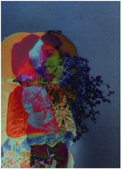 Setareh Shahbazi, 'Spectral Days #33', 2013
