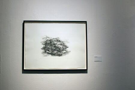 Naiza H. Khan, 'The Land was Once Free', 2015