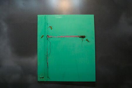 Huma Mulji, 'Ode to a Tubelight', 2011