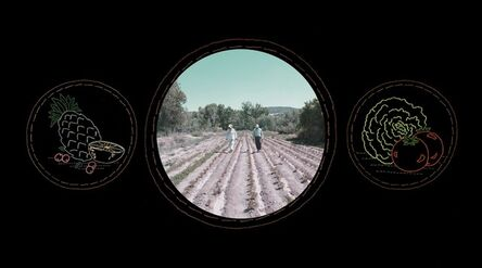 Laurie Tümer, 'Glowing Evidence: Lucero's Organic Farm', 2004