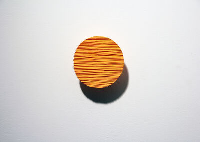 Masayuki Tsubota, 'the wall of self_iorr1', 2015
