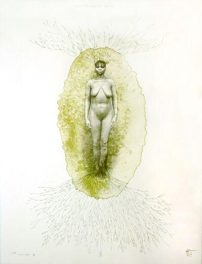 Rosana Paulino, 'Assentemento #1', 2012