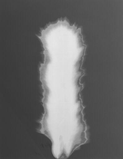 Hiroshi Sugimoto, 'In Praise of Shadow', 2000