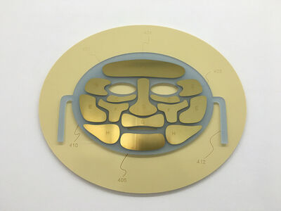 Goiffon & Beauté, 'Controlled facial mask #3', 2016