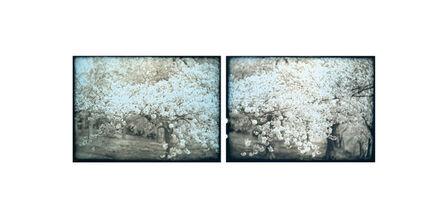 Takashi Arai, 'Explosion No.4', 2011