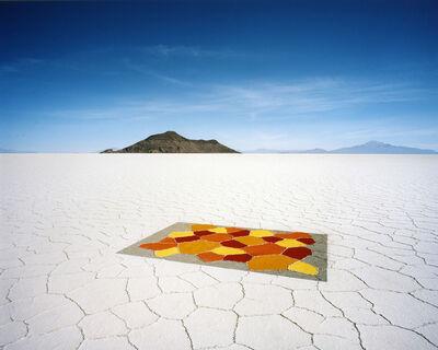 Scarlett Hooft  Graafland, 'Carpet', 2010