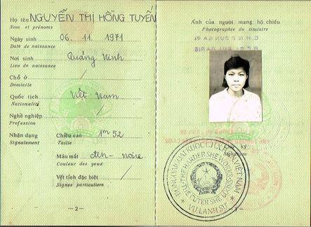 Soheila Sokhanvari, 'Vietnamese passport', 2010