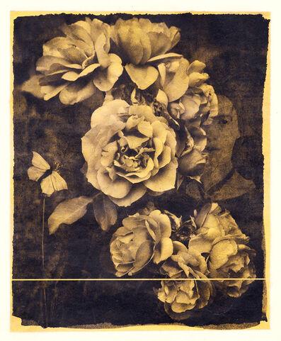 Brigitte Carnochan, 'Nobody Knows this Little Rose', 2018