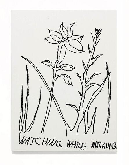 JIM JOE, 'CREATIVITY KILLS WEED (STOLEN FLOWERS)', 2018