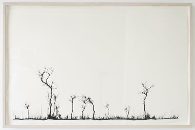 Mahmoud Hamadani, 'Untitled (Traces)', 2008