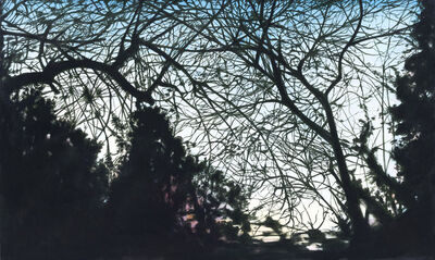 William Leavitt, 'Silhouetted Branches', 1998