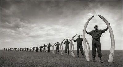 Nick Brandt, 'Rangers (Line Of) With Tusks Of Killed Elephants, Amboseli', 2011