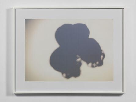 Anri Sala, 'Untitled (d'apres Cezanne)', 2015