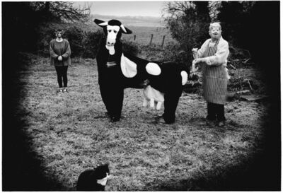 Peter Finnemore, 'Mad About the Cow', 2001