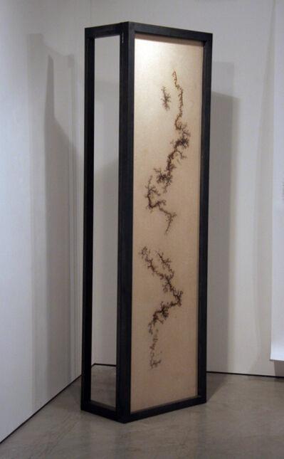 Douglas White, 'Lichtenberg Burn IV', 2011