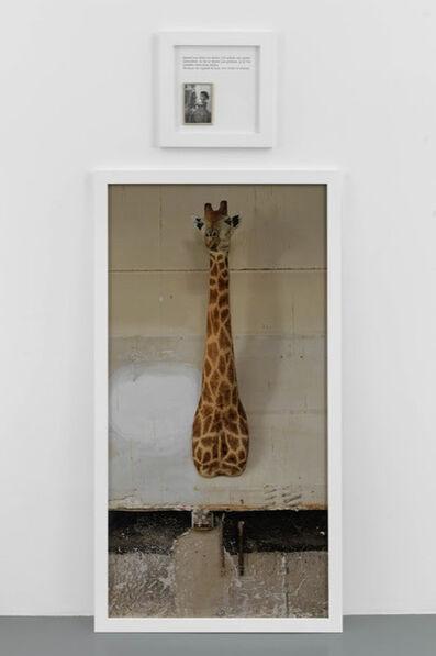 Sophie Calle, 'La Girafe / The Giraffe', 2012