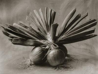 Cy DeCosse, 'Three Asian Onions'