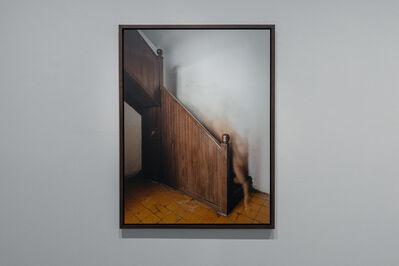 Carmen Argote, 'Se metió por la azotea ', 2016